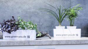 GreenYou Gärtner Garten