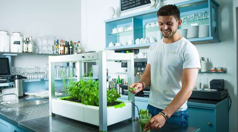 greenYou moderne Indoor-Gardening-Systeme