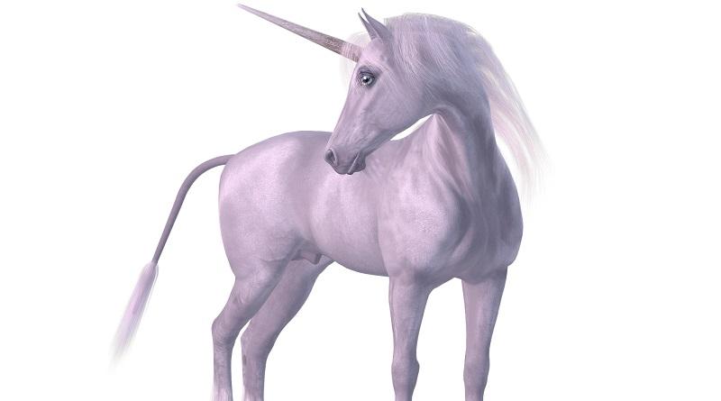 Unicorn-Gründer