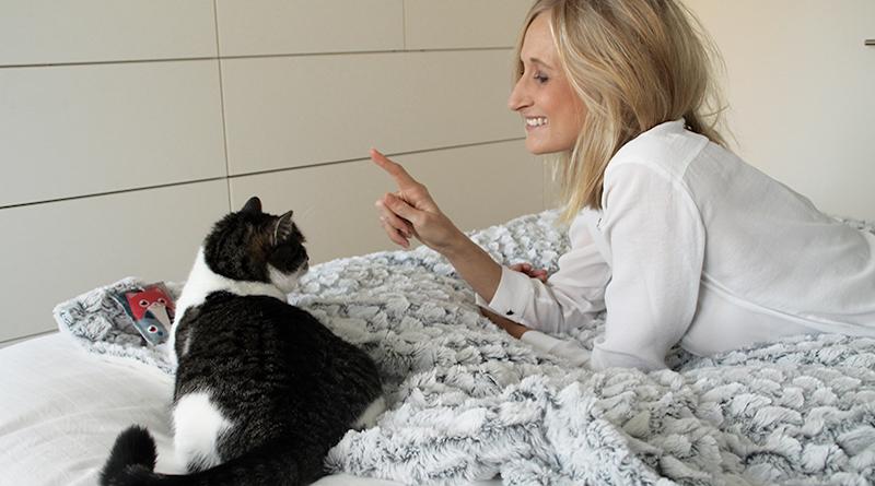 blepi Tiere haustier Tierbetreuung