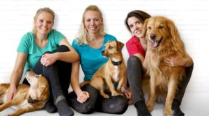 Tales&Tails Hunde Fisch