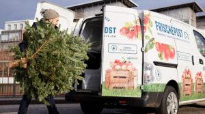 Frischepost Geschenke , Weihnachtsbaum