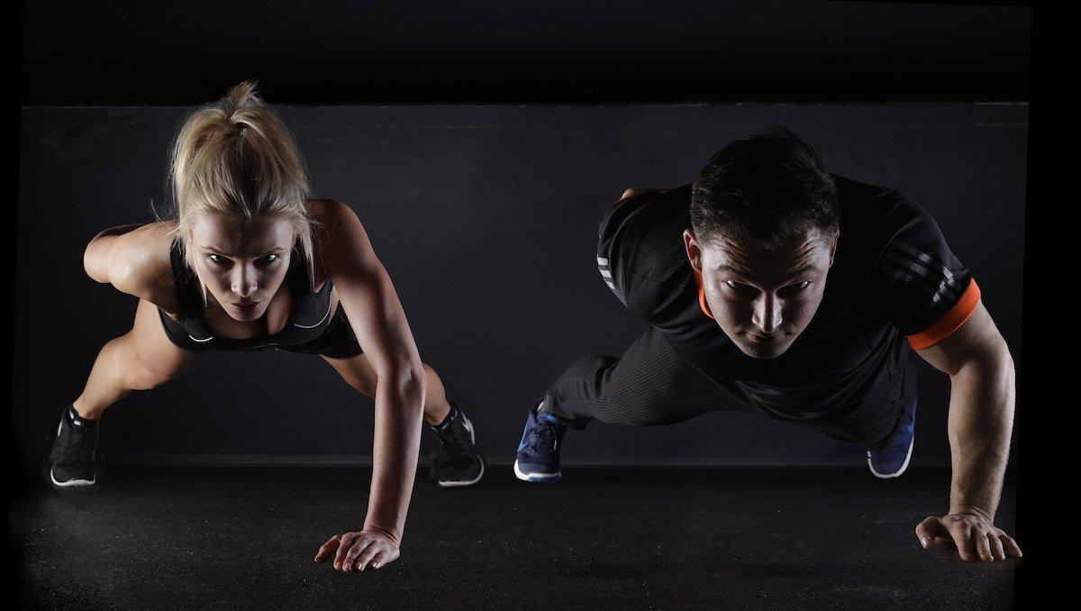 fitnessbranche startup